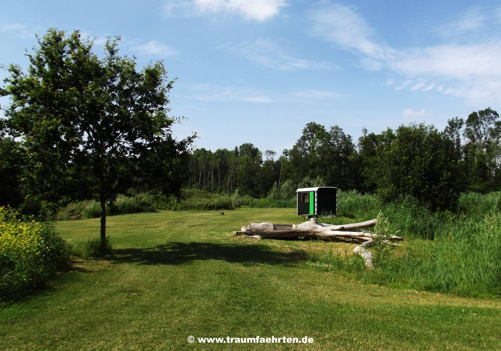 Tiny House Camping De Wielewaal
