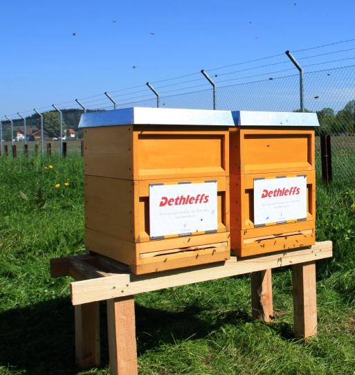 Bienenstöcke Firma Dethleffs Isny