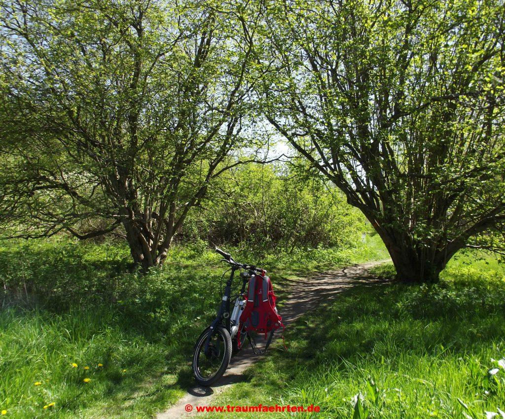 E-Bike Kalkhoff Sahel