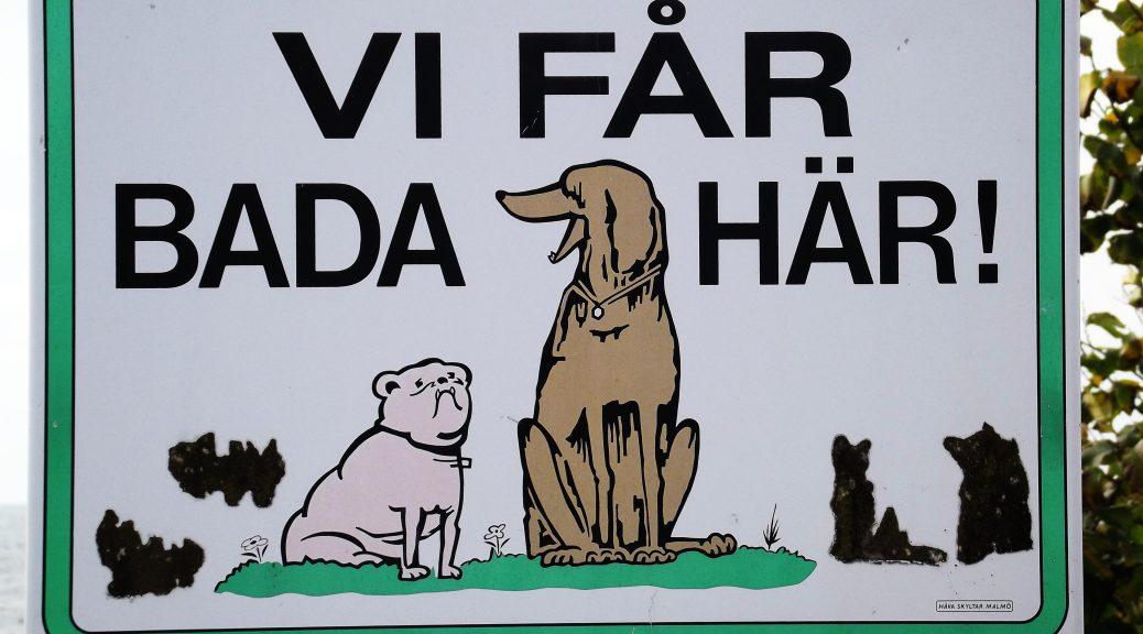 Mit Hund nach Schweden - Urlaubsglück auf 4 Pfoten