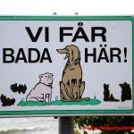 Mit dem Hund nach Schweden - Urlaubsglück auf 4 Pfoten