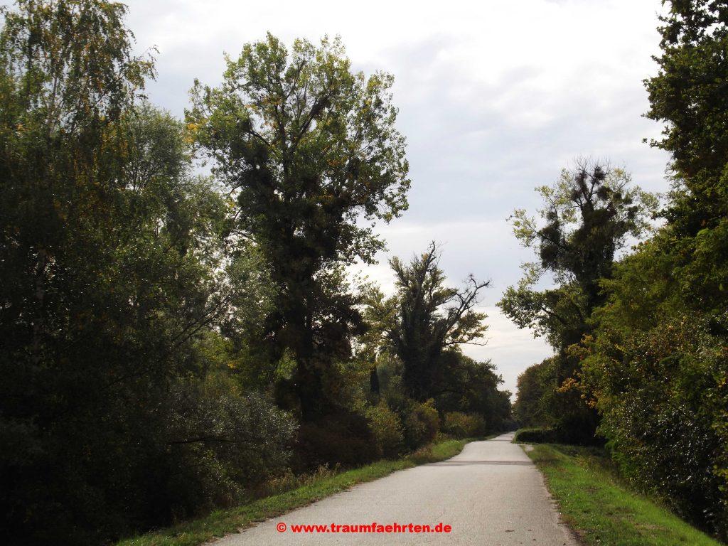 Mit dem Wohnmobil nach Drusenheim